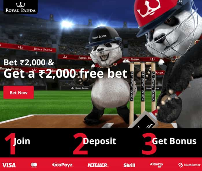 ROYAL PANDA SPORT BONUS INR